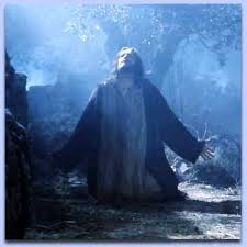 """""""Father, if you are willing, take this cup from me; yet not my will, but yours be done."""""""