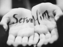 servant 5