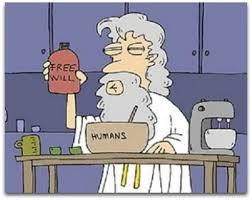 free will 2