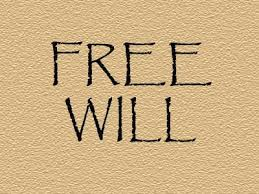 free will 3