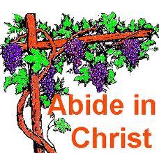 abiding best